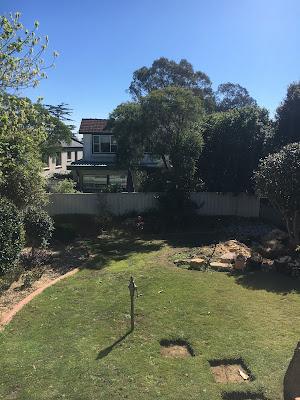 Laying new turf in the backyard