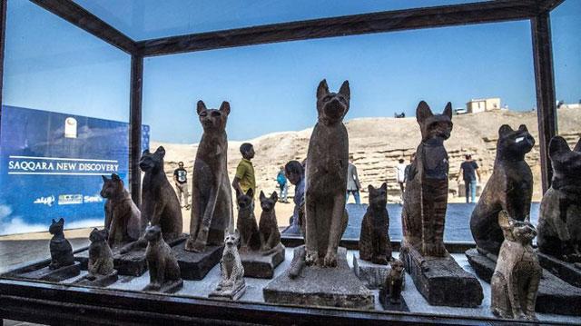 mumi hewan mesir kuno