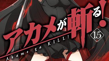 Descargar Akame Ga Kill! (Completos) (15/15)
