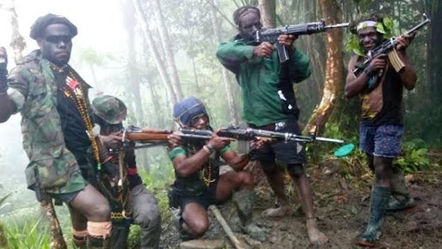 Muhammadiyah dan PBNU Dukung KKB Papua Dilabeli Teroris