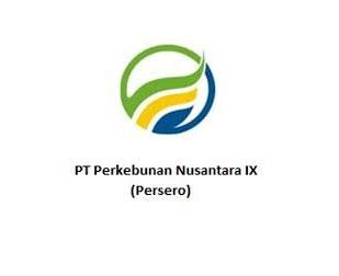 Lowongan Kerja PT Perkebunan Nusantara IX Terbaru