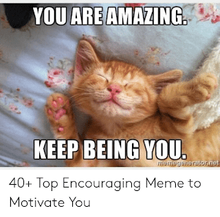 thank you memes for friends