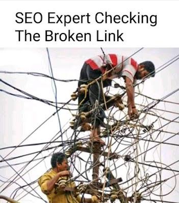 SEO expert jokes