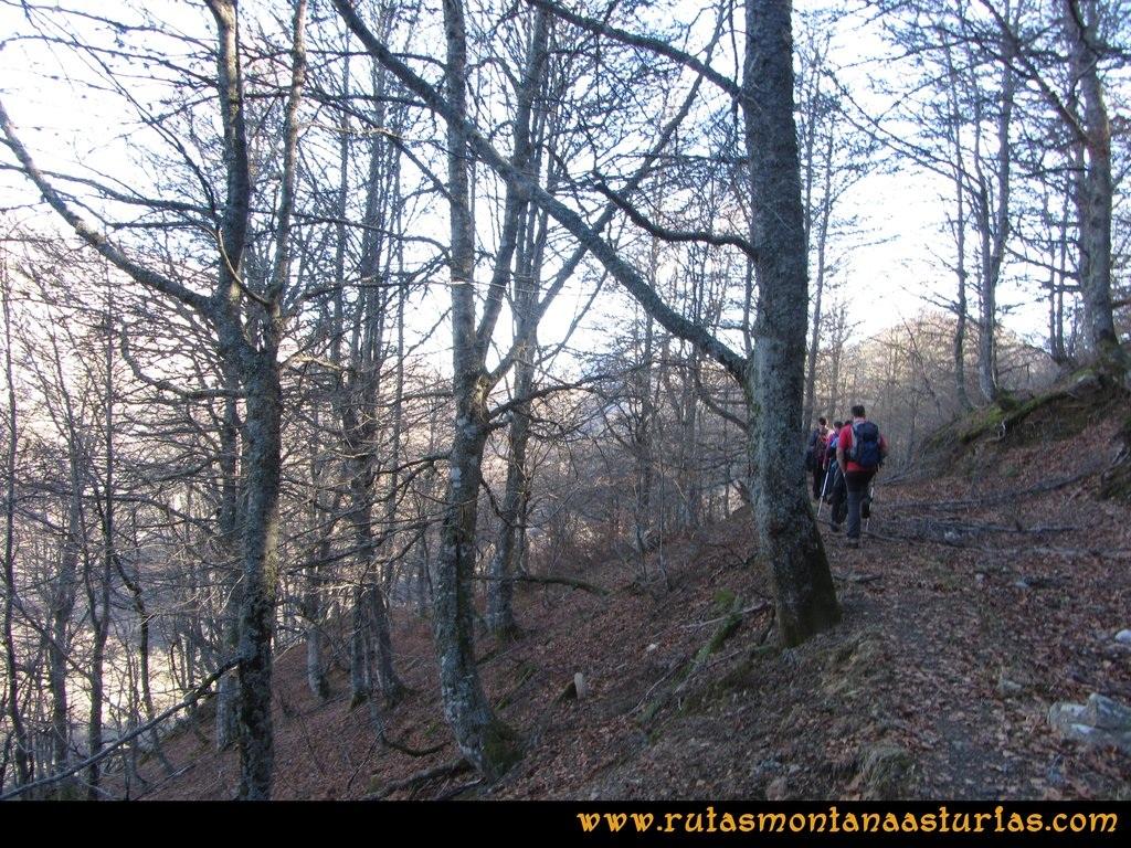 Pico Mosquito desde Tarna: Atravesando bosque hacia collado Paréu