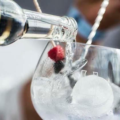 Gin Tasting & Spirits - Porto