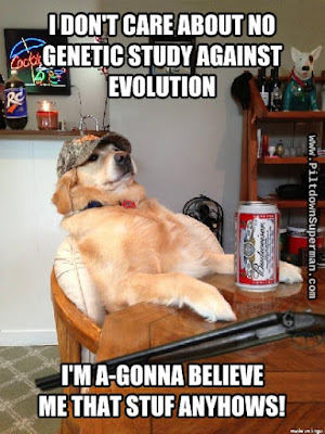 Some evolutionists are realizing that their view of genetics has no foundation. Creationists have been telling them this all along.
