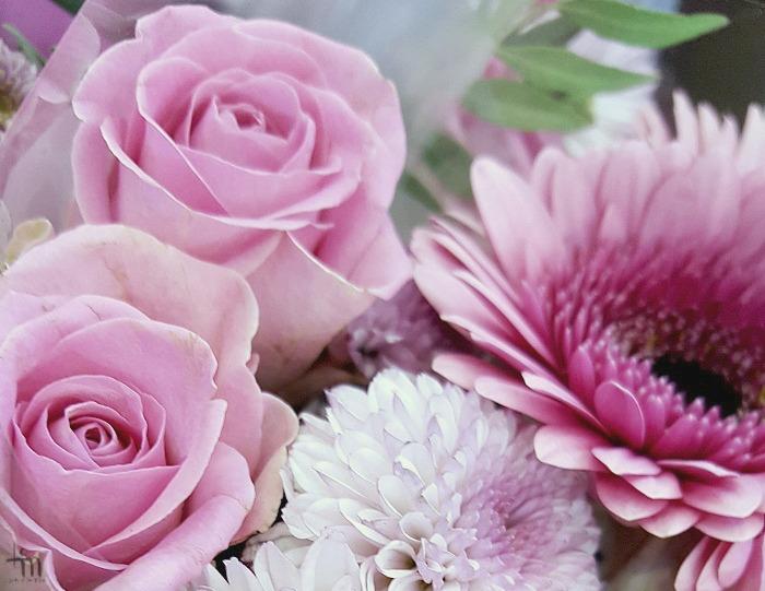 pinkit ruusut - pink roses