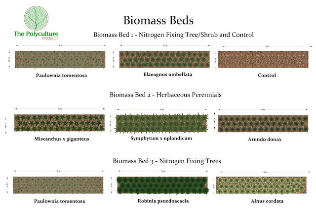 Biomassebetten