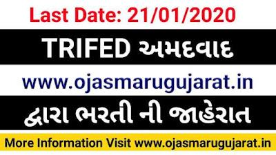 TRIFED Ahmedabad Recruitment 2020, Ahmedabad Gujarat Job recruitment, Job In Ahmedabad 2020, Job In Ahmedabad Gujarat 2020,