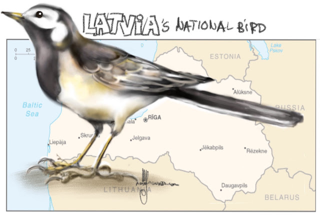 Latvia's national bird Painting by Ul Artmagenta