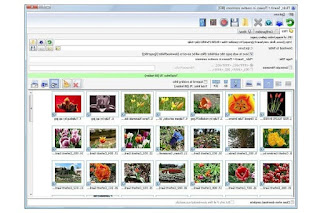 Bulk Image Downloader 5.45 برنامج لمساعدتك في تنزيل معارض الصور الكبيرة بنقرة واحدة