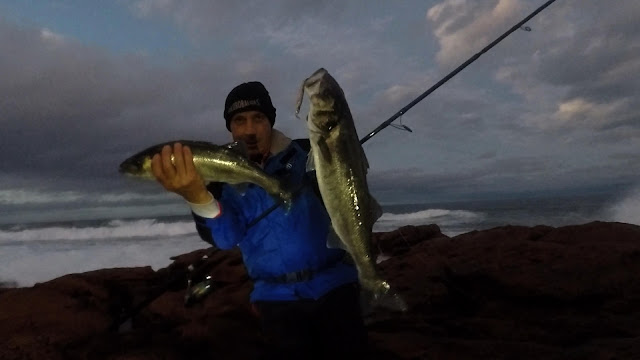 PORTADA%2BBLOG - Pescando a la robaliza con mar bravo 🌊 🌊 🌊