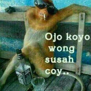 Gambar lucu Bahasa Jawa 5