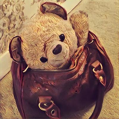 Teddy bear in a purse
