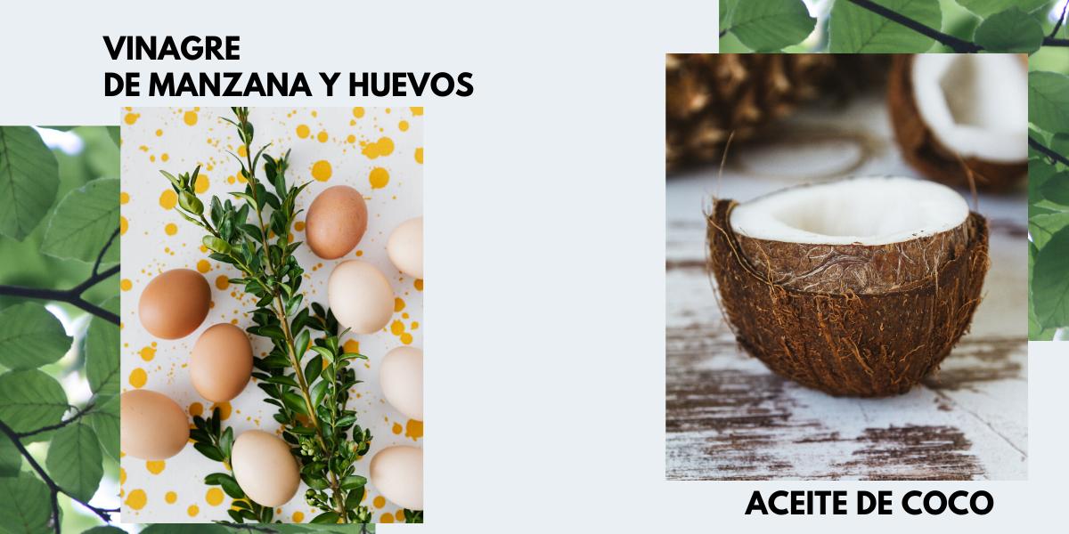 vinagre de manzana y huevos- aceite de coco