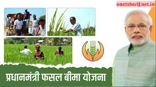 प्रधानमंत्री फसल बीमा योजना (पीएमएफबीवाई) के दायरे में कौन सी खेती आती है?