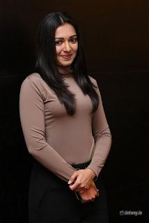 Catherine Tresa Photos at 14th Santosham Awards Curtain Raiser Event