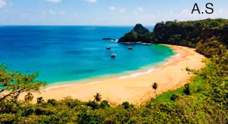 إعادة فتح جزر الفردوس للزوار الذين أصيبوا بـ Covid-19 فقط