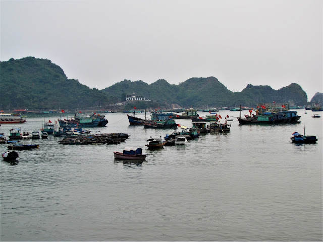 cat ba bay halong bay vietnam