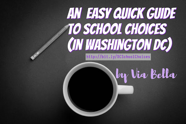 An Easy Quick Guide to School Choices (in Washington DC), Washington DC Schools, DCPS, DCPCS, FPCSO, Choosing a school, Private Schools, Charter Schools, Public Charter Schools, Public School, Homeschooling, What is the difference between public school and charter school, An easy guide to help you choose your school, children, OSSE, children's education, be empowered as a parent, DC education system, Via Bella