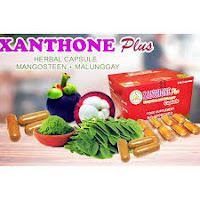 Xanthone plus where to buy?