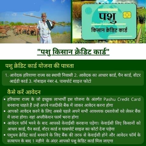 पशु किसान क्रेडिट कार्ड योजना ऑनलाइन आवेदन – दस्तावेज, लाभ, आवेदन फॉर्म पशु किसान क्रेडिट कार्ड योजना क्या है? What is Pashu Kisan Credit Card Yojana?