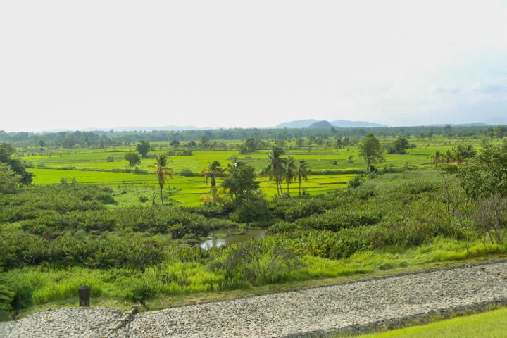 Beautiful Sri Lanka. On the way Kandalama.