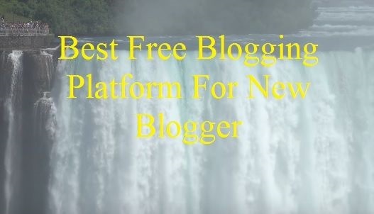 how to optimize blog posts for seo, seo, image, buy domain, free domain