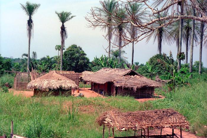 RDC, Zaïre, Kivu, Musienene, © L. Gigout, 1991