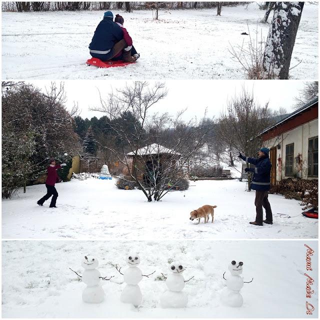 Spaß im Schnee - Fun in the Snow