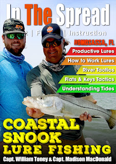 in the spread fishing snook william toney homosassa inshore fishing