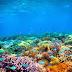 Pesona Pulau Gili Trawangan Lombok