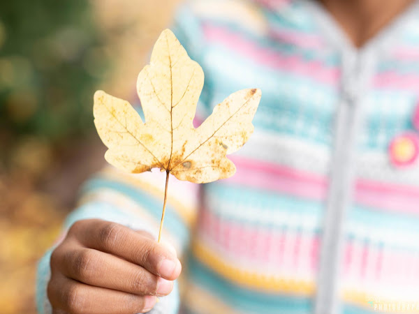 Fifteen Self-Care Activities Perfect For Fall