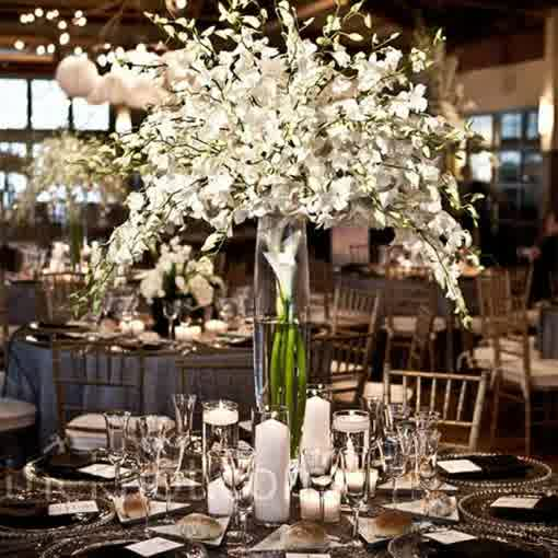 Inexpensive Wedding Centerpiece Ideas: Tall Vases For Cheap Wedding Centerpieces Ideas