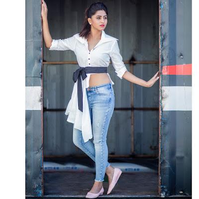 Varshini Sounderajan  (Indian Actress) Wiki, Bio, Age, Height, Family, Career, Awards, and Many More