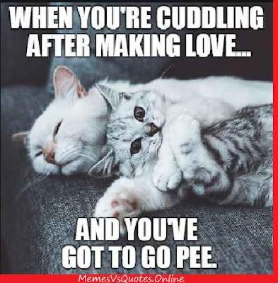 Making Love Memes