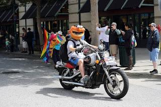 Animal Motorcycle helmet Cover