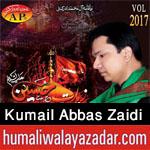 http://www.humaliwalayazadar.com/2017/09/syed-kumail-abbas-zaidi-nohay-2018.html