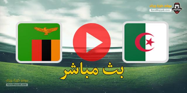 نتيجة مباراة الجزائر وزامبيا اليوم 25 مارس 2021 في تصفيات كأس أمم أفريقيا