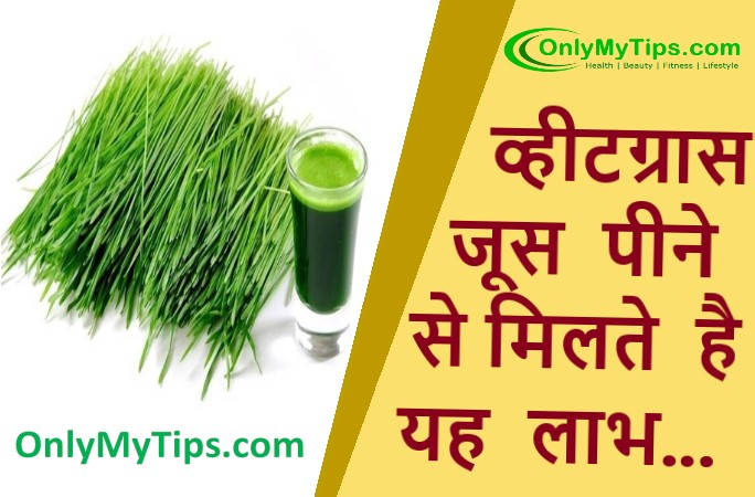 You must have heard the name of wheatgrass ie wheat sorghum, juice made from this is very beneficial for your health. Wheat sap ie wheat sorghum juice acts like herbs in many diseases, vitamins, amino acids, minerals, chlorophyll etc. found in it keep us healthy and healthy by protecting us from many deadly diseases. If a glass of wheatgrass juice is drunk daily, it protects us like a protective shield.
