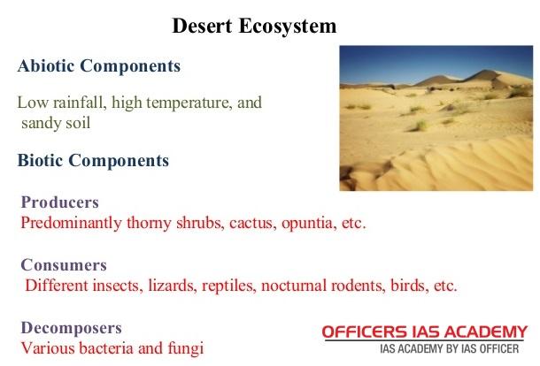 ecosystem and its characteristics