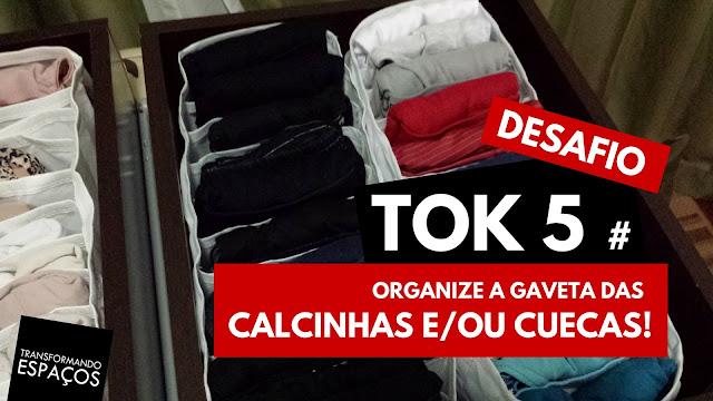 Organize a gaveta das calcinhas e/ou cuecas - Tok 5 | Desafio 52 toks de organização e decor