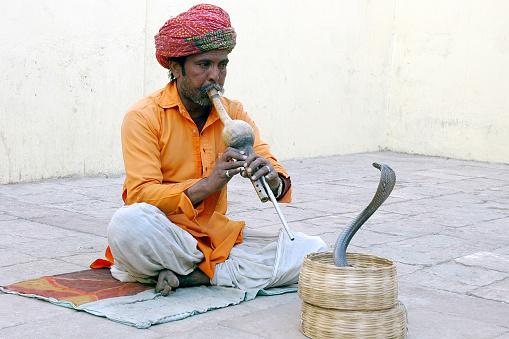 The Snake Festival-Nag Panchami