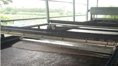 Quá trình gạt bọt khí- cặn của bể tuyển nổi DAF
