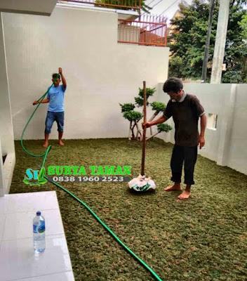 Tukang Rumput | Jual Rumput Taman | jual rumput di pondok cabe - SuryaTaman