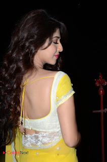 Actress Sonarika Bhadoria Stills in Yellow Saree  0054.JPG
