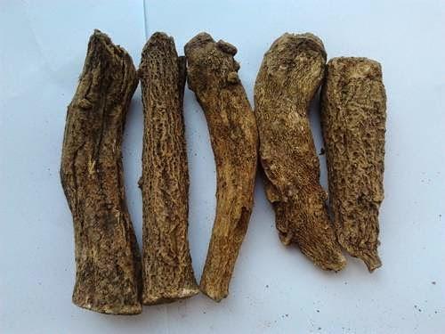 Kushth | Herbal Remedies