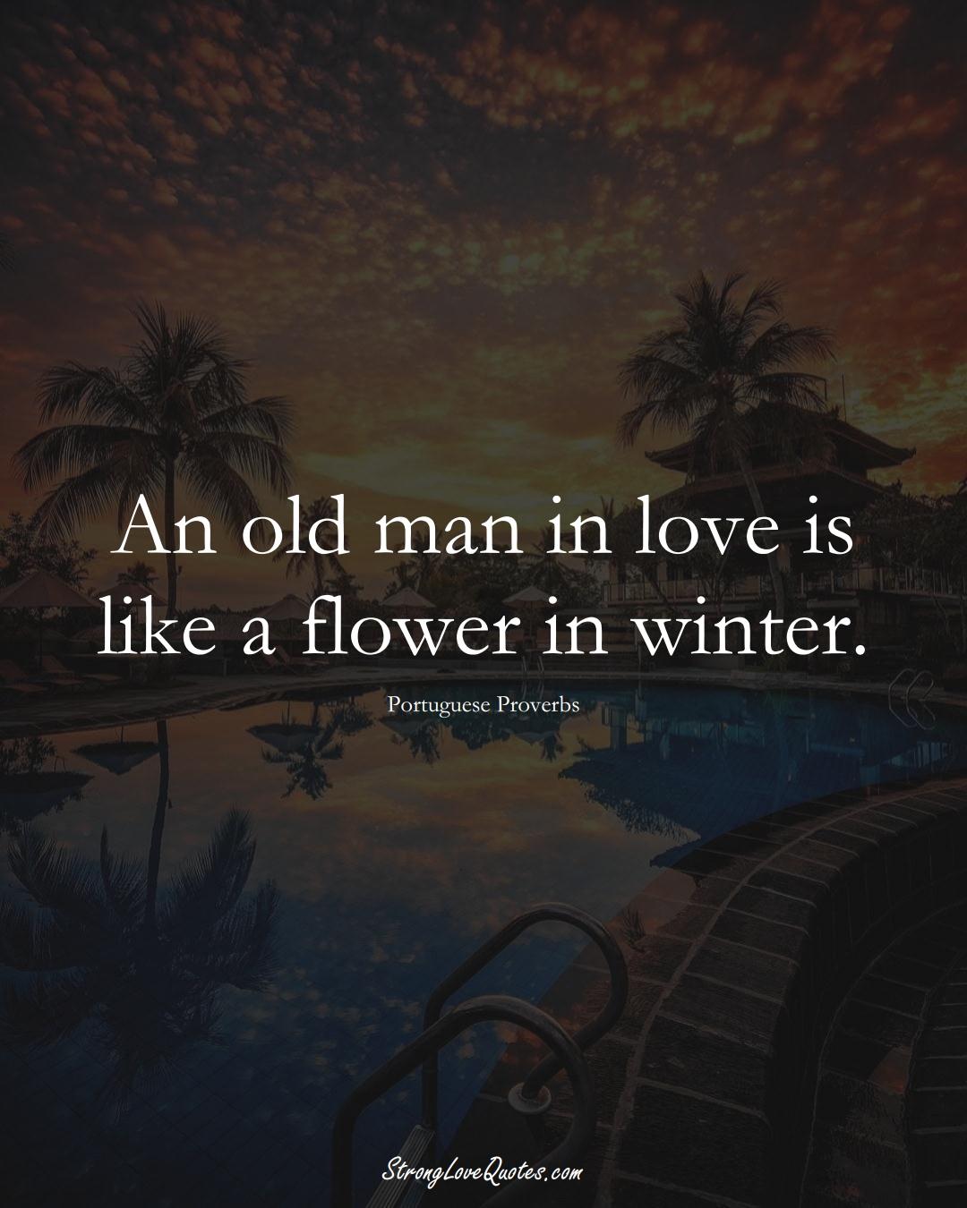 An old man in love is like a flower in winter. (Portuguese Sayings);  #EuropeanSayings