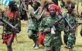 KKB di Papua Harus Diberangus