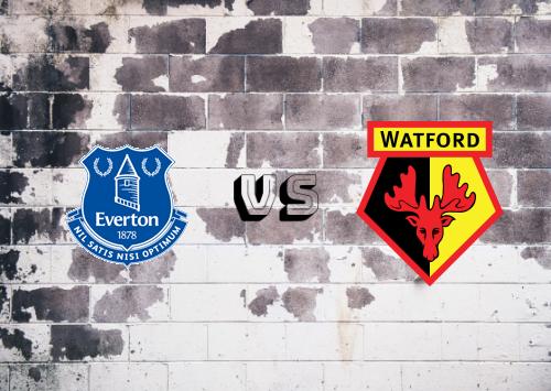Everton vs Watford  Resumen
